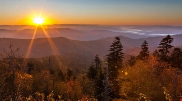 Top 5 Smoky Mountain Hikes That Are Great for Kids