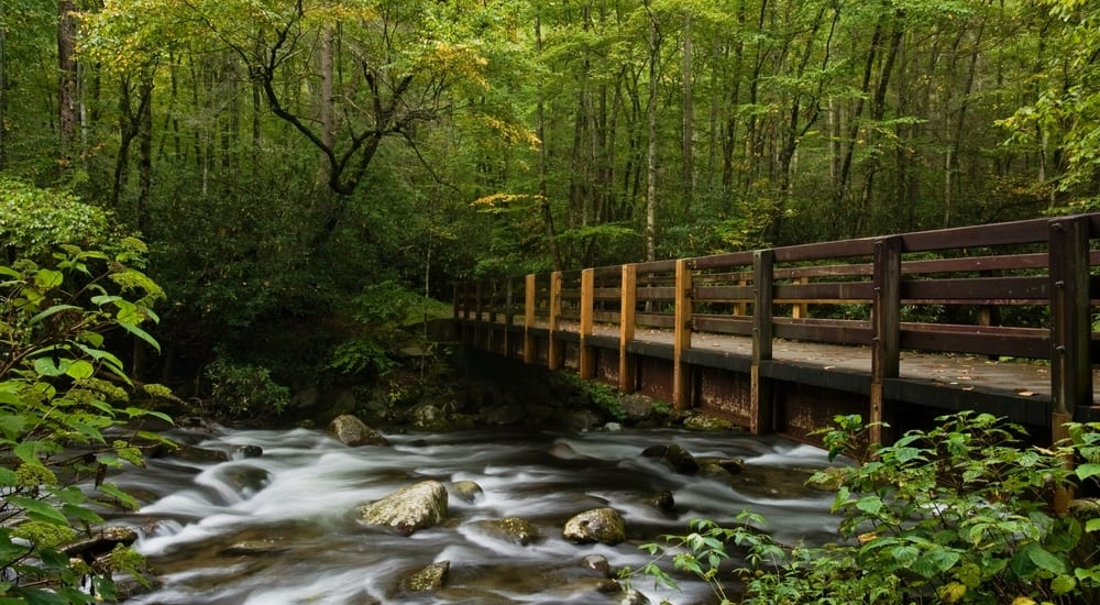 4 Fun Activities You Can Enjoy at Our Smoky Mountain Campground This Summer