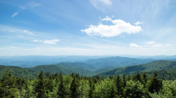 What NOT to Do When You Go Camping in the Smokies