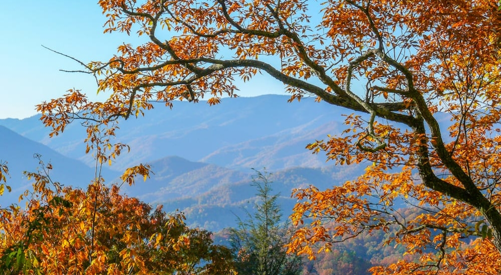 5 Tips to Stay Warm While Camping in the Smokies During the Fall