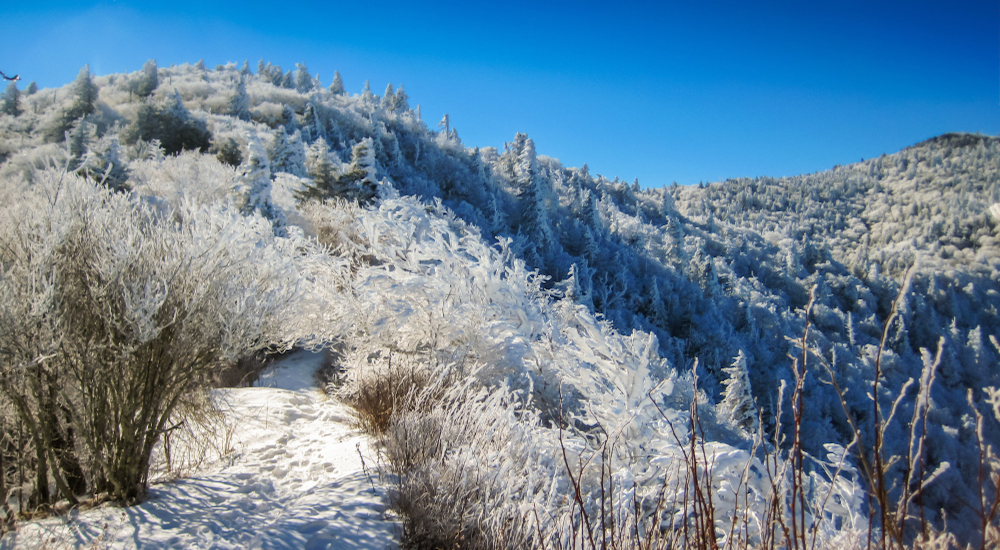 4 of the Best Winter Hikes in the Smoky Mountains