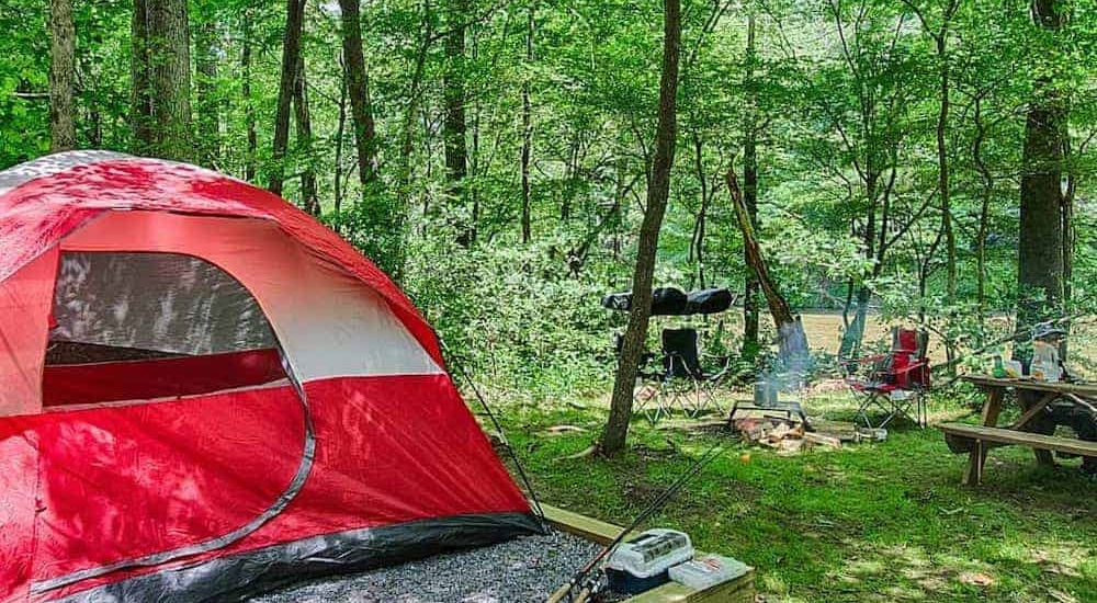 Top 4 Activities to do on the Pigeon River